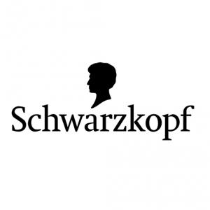 berlin-schwarzkopf-logo